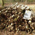 Insect habitat, New Copse, Sonning Common Woodland Walk