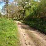 Highmoor lanes and hedgerows walk
