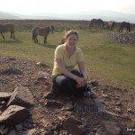 Dunkery Beacon with Exmoor ponies