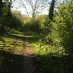 Path from Binfield Heath back towards Sonning