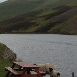 View from fishing tea hut picnic spot of Loganlee Reservoir on the Pentlands Pushchair walk