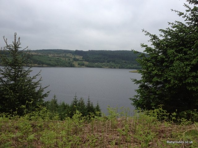 View across Kielder Water and forest from baby friendly walking route