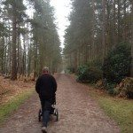 A photo showing a pushchair friendly path at Swinley Forest, Bracknell.