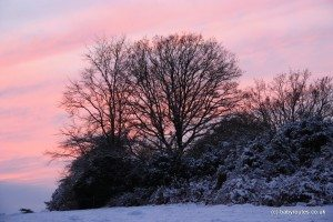 Snowy sunset landscape in Binfield Heath, Oxfordshire