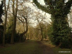 Green Drive, Cliveden