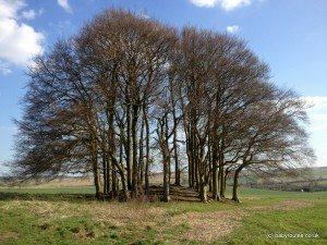 Ridgeway walk Overton Hill