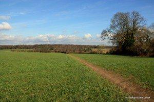 Rural chiltern views, Binfield Heath