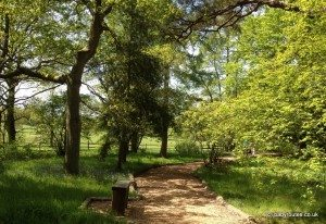 trail at scotney castle