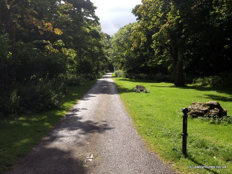 Ross Castle Lakes, Mountains and Forest Family Walk, Kerry, Ireland