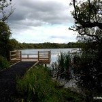 Granston Lough, Grantstown Wood Nature Reserve, Ireland