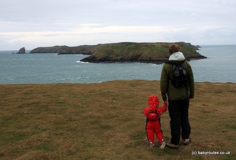 Martin's Haven seals and islands walk, Baby Routes, Pembrokeshire