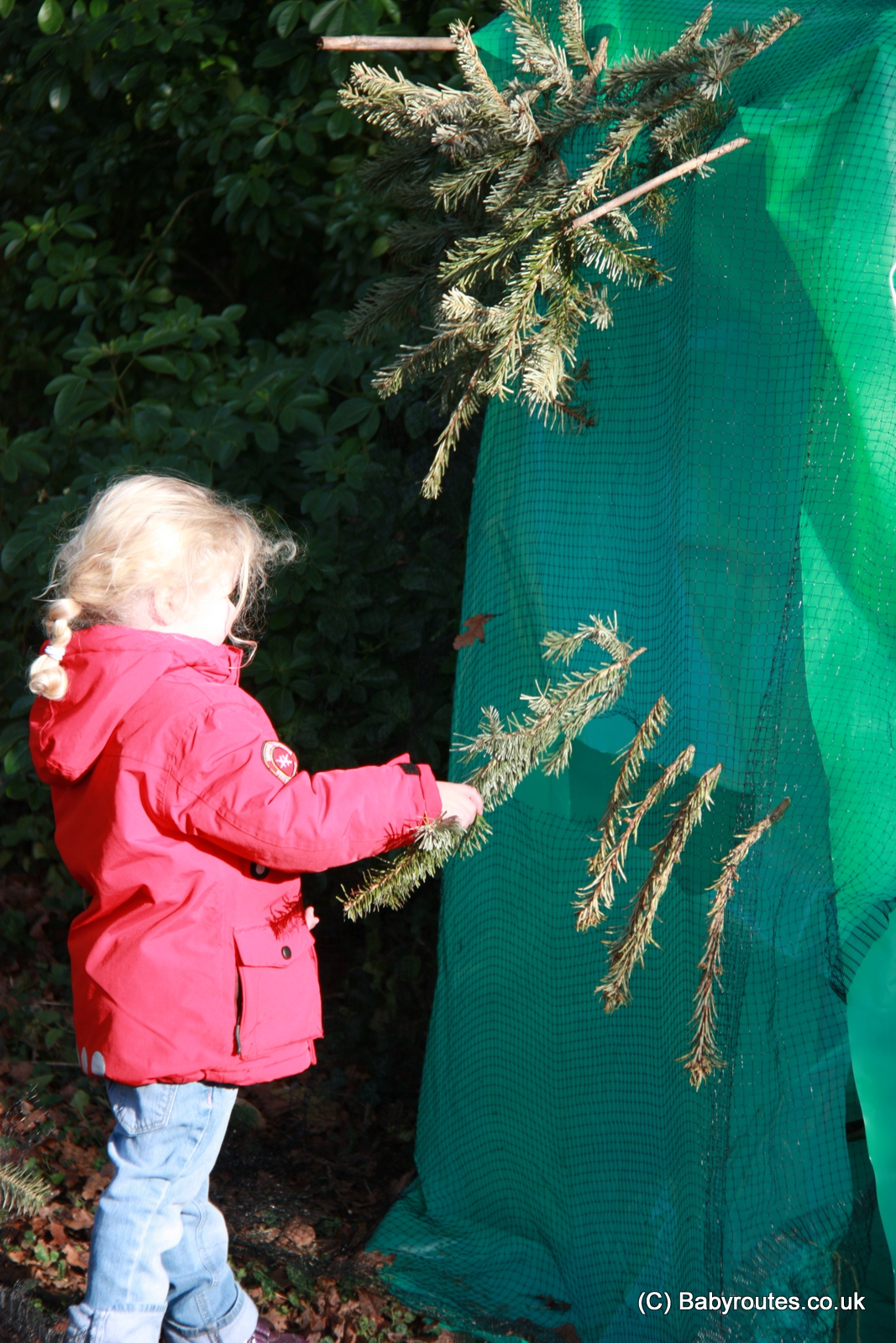 Building a bird hide in the garden for kids