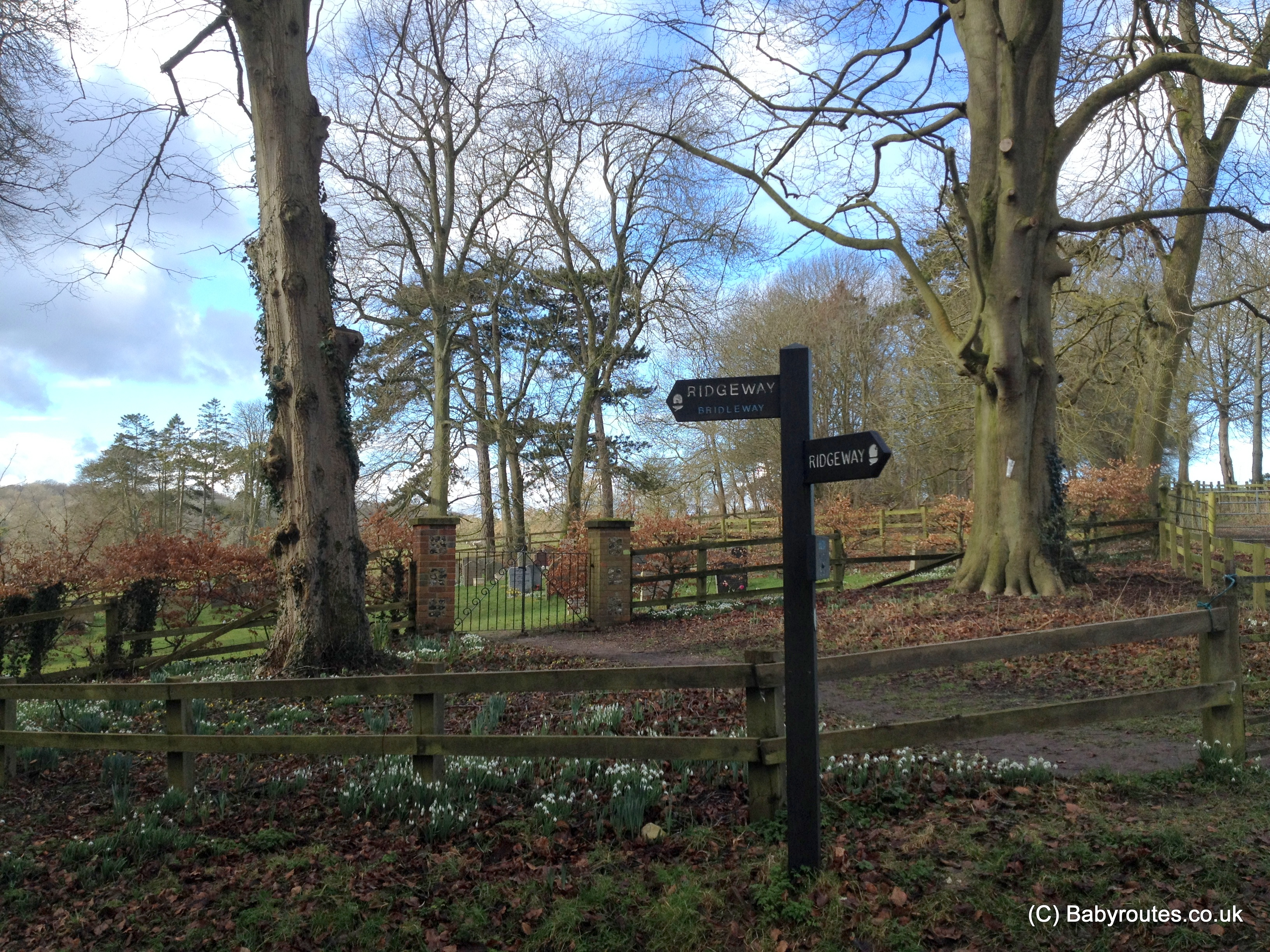 Swyncombe snowdrops walk, Oxfordshire, Baby Routes
