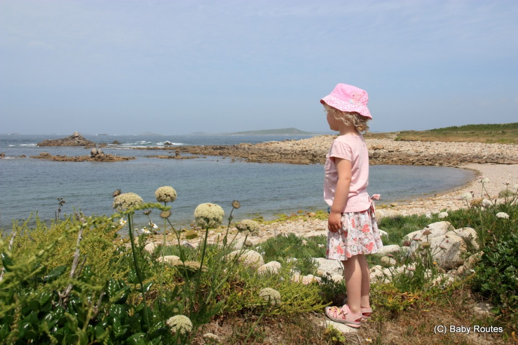 Roo looking out over Tresco, Isles of Scilly Wildlife. and  Travel with Children