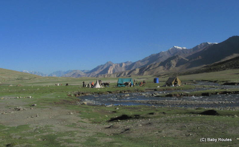 Camping on the Nimaling Plateau at over 5000m, Ladakh, India