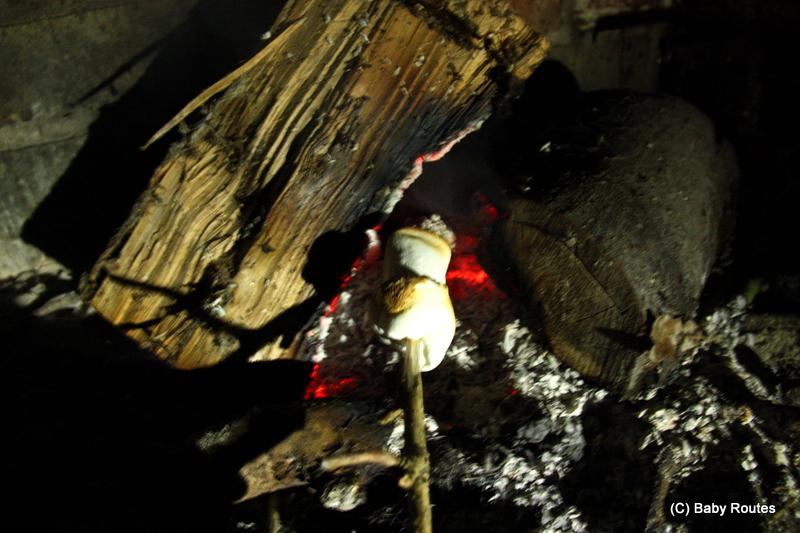 Marshmallow on campfire