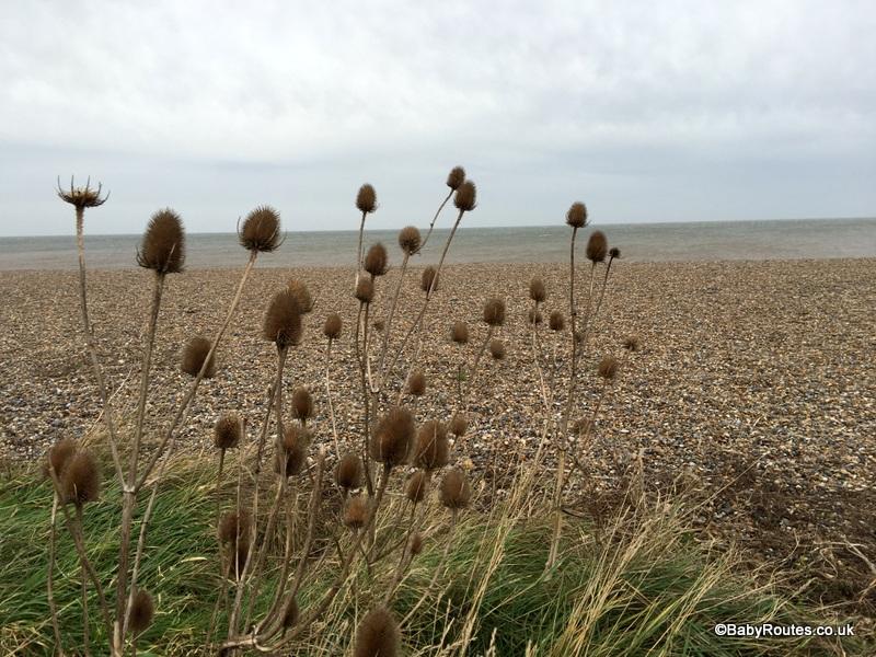 Norfolk Winter Weekend