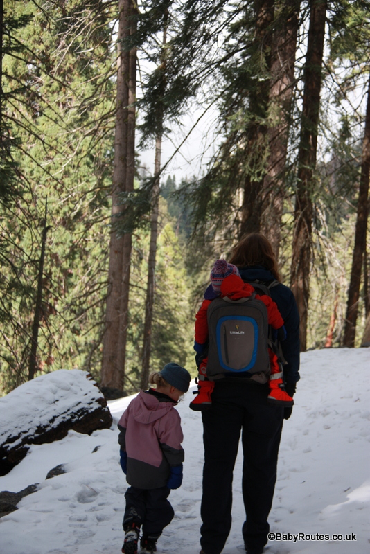 LittleLife Ultralight S3 Child Carrier Review, Sequoia National Park