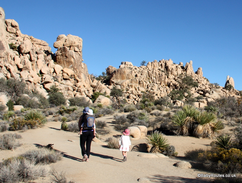 LittleLife Ultralight S3 Child Carrier Review, Joshua Tree National Park, California, USA