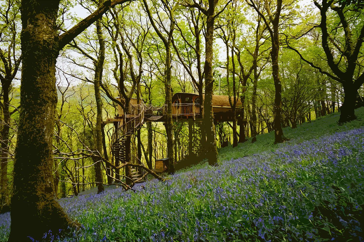 Tree house Wales, unusual sleepover ideas, Living-room.co