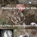 How to make animal track plaster casts, 30 Days Wild