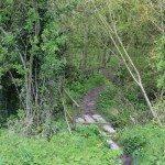 Uffington White Horse Circular Walk