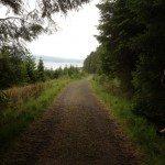 Return path to Leaplish Waterside Park, Kielder Water