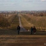 Photo of the Long Walk at Windsor Castle