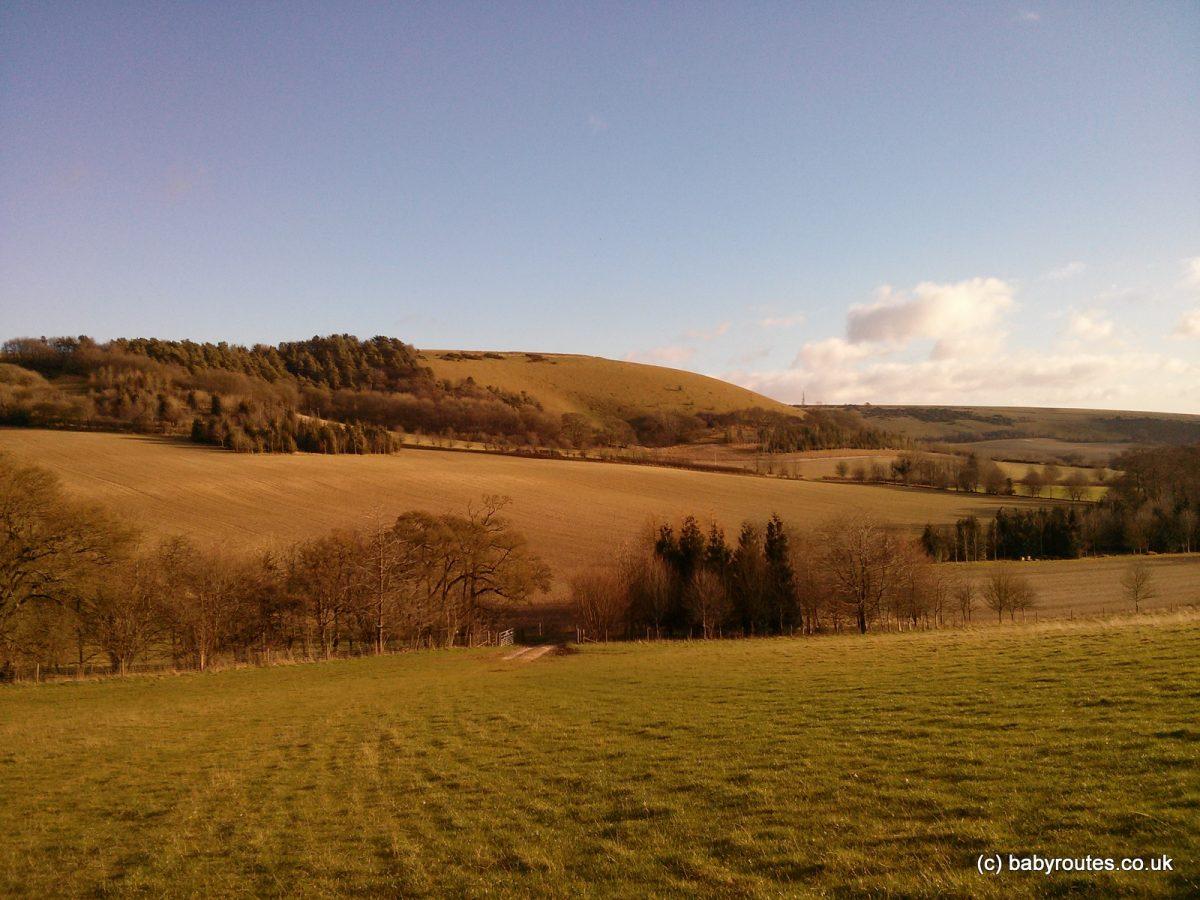 View of Walbury Hill, Berkshire