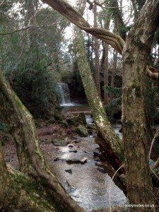 Chew Stoke Waterfall in winter, Chew Stoke Waterfall Walk