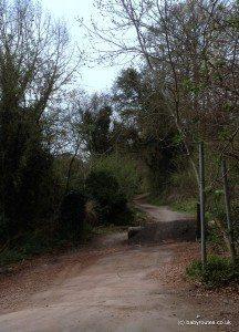 The Warren, Caversham - Mapledurham walk, Reading, Oxfordshire