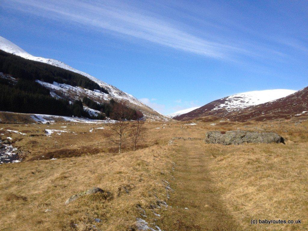 Glenlochsie Lodge & forest walk, Spittal of Glenshee, Cairngorms, Scotland
