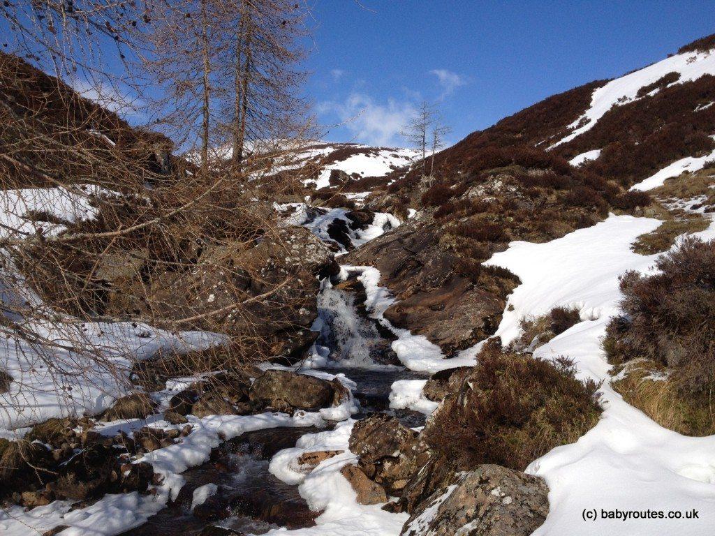 Forest trail, Glenlochsie Lodge & forest walk, Spittal of Glenshee, Cairngorms, Scotland