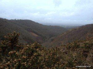 Views over the Teign Valley, Castle Drogo, National Trust, Dartmoor, Devon