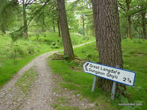 Return path to Elterwater through the woodland.