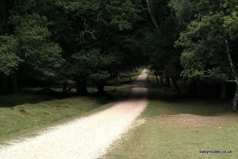 Beechen Lane, Lyndhurst short loop pushchair walk, New Forest