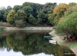 Queens Valley Reservoir, Jersey