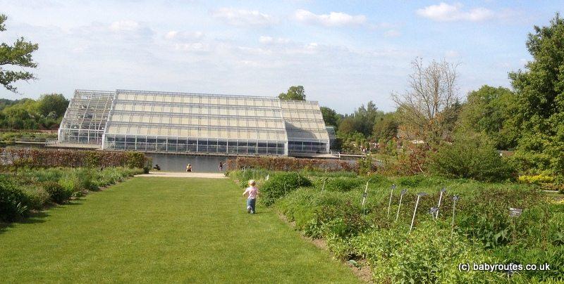 RHS Wisley, Surrey