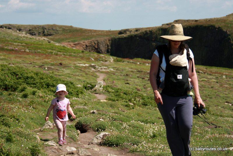 Narrow paths on Skomer Island, Pembrokeshire, Wales
