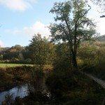River Derwent Otter Walk, Yorkshire