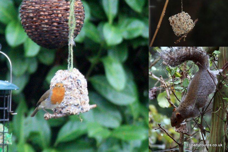 Birds eating home-made bird pudding