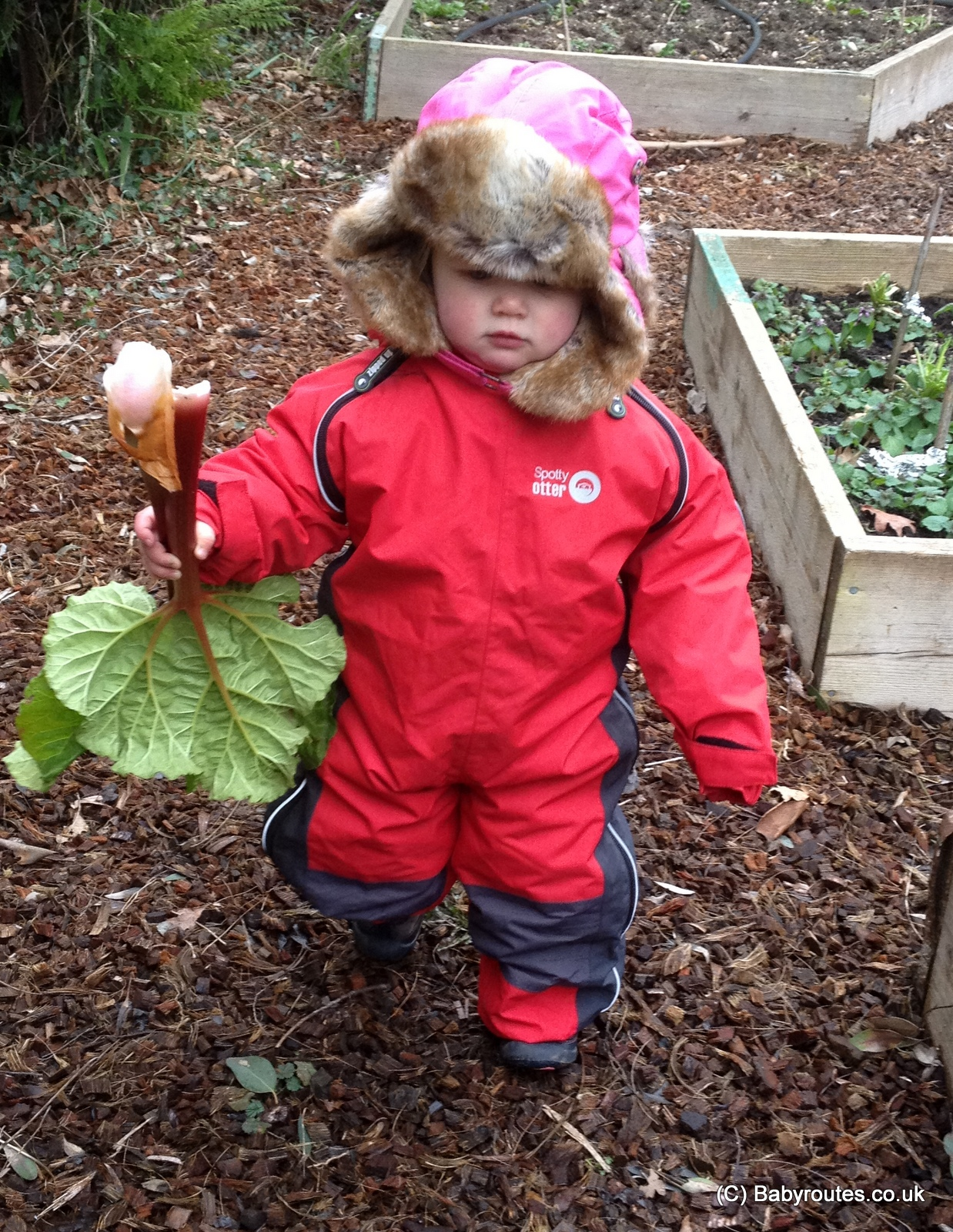 Gardening with kids, Baby Routes