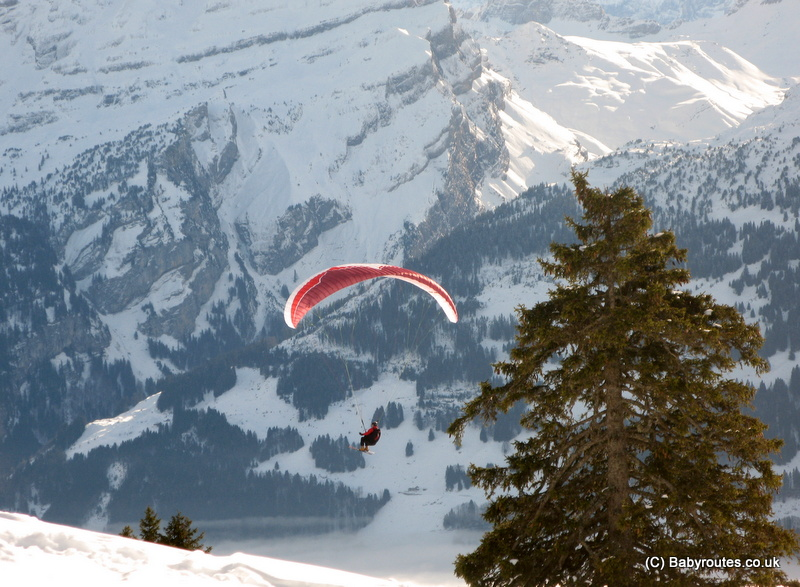 Paragliding with skis