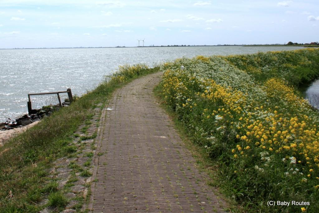 Marken, Amsterdam, Waterlands Cycling Tour