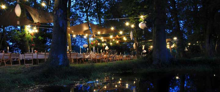 midsummerweddingparty