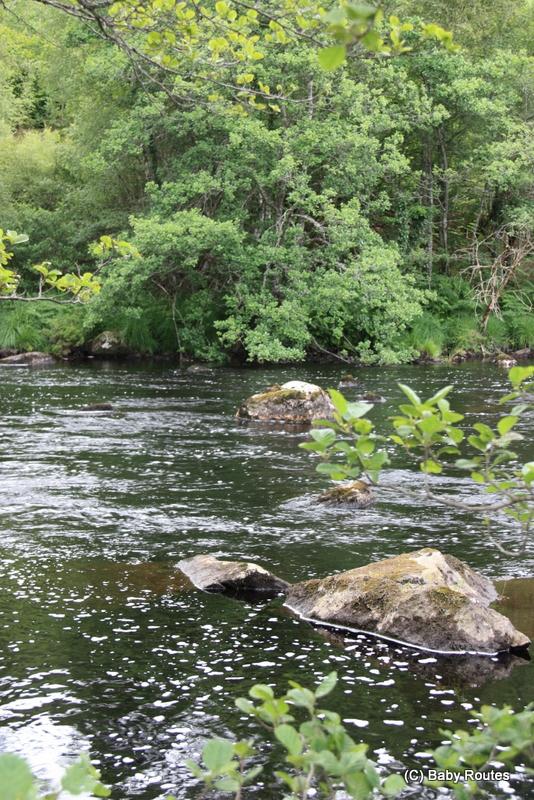 Rogie Falls Salmon Walk, Skoda Superb Scotland Trip, Baby Routes