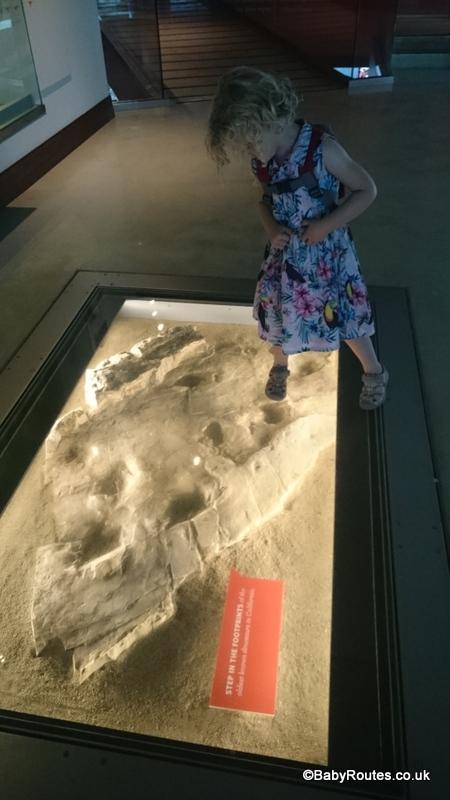 Treading on dinosaur feet at Natural History Museum, Downtown LA, California
