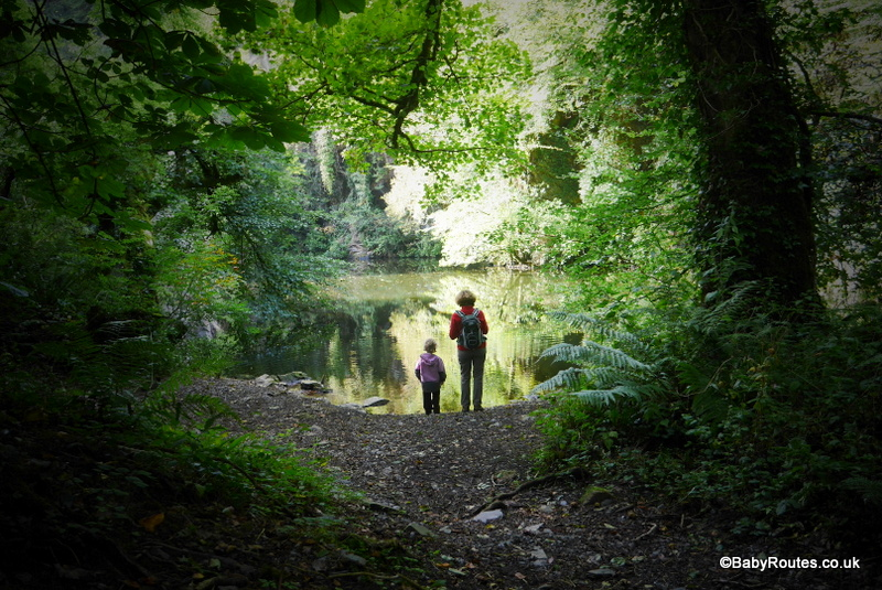 Anghof Valley, Wolfs Castle, Pembrokeshire
