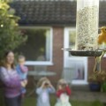 RSPB Big Garden Bird Watch
