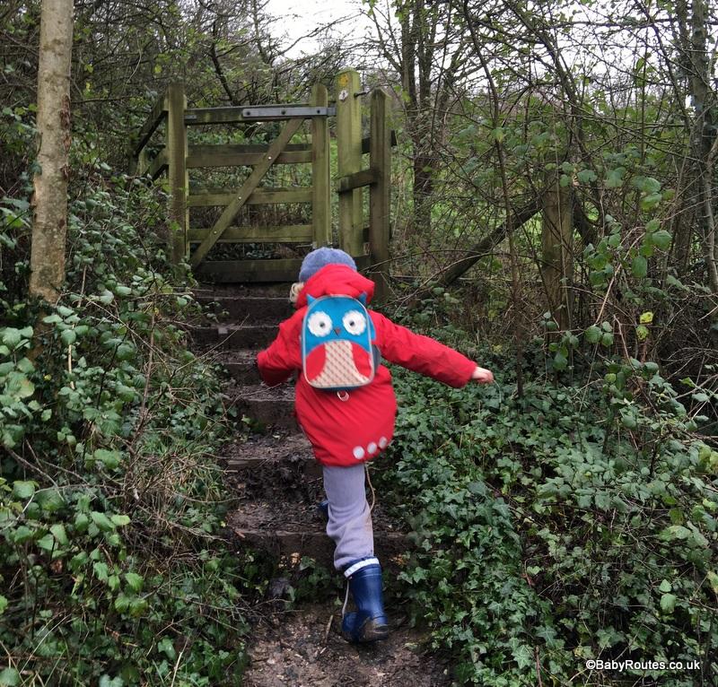 Bishop Sutton & Burledge Hill Circular Walk